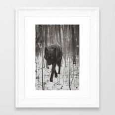 Snow Wolf Framed Art Print