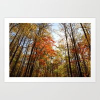 Fall's Wanderlust  Art Print