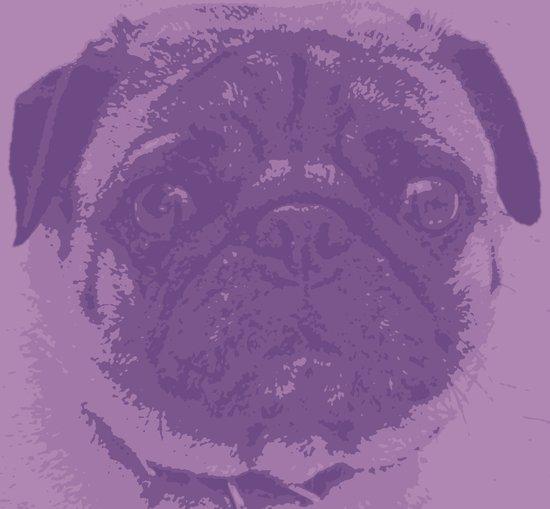 Purple Pug Art Print