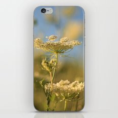 Flowers from Below iPhone & iPod Skin