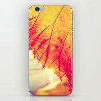 Autumn - iPhone & iPod Skin