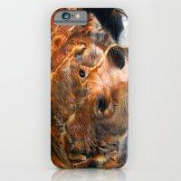 Lazy Bear iPhone 6 Slim Case