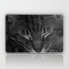 thor asleep Laptop & iPad Skin