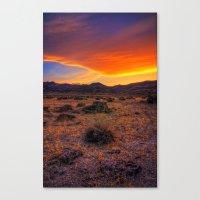 Desert Delight Canvas Print