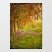 The Bellbell Pathway. Canvas Print