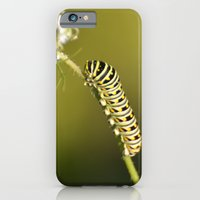 Catapillar On Queen Anns… iPhone 6 Slim Case