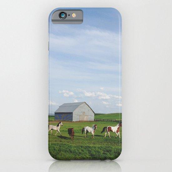 Farm Horses iPhone & iPod Case