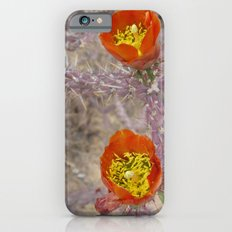 Pencil cholla in flower iPhone 6 Slim Case