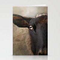 In a sheep's eye Stationery Cards