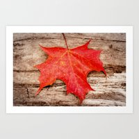 Art Print featuring LEAF ME ALONE by Catspaws