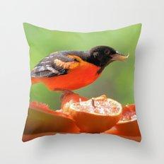 Orange & Black (Baltimore Oriole) Throw Pillow