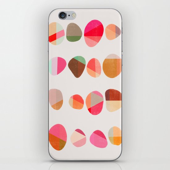 Painted Pebbles 5 iPhone & iPod Skin