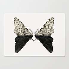 Peppered Moth Canvas Print