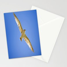 Eyes in the Sky Stationery Cards