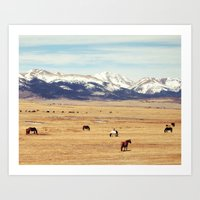 Horses On The Rockies Art Print