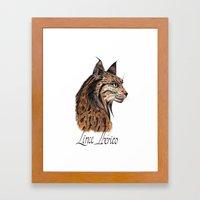 Iberian Lynx Profile Framed Art Print