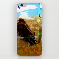 New York Pigeons iPhone & iPod Skin
