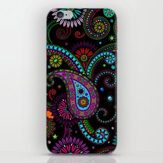 Paisley Panels iPhone & iPod Skin