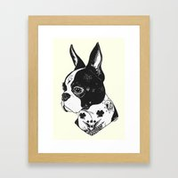 Dog - Tattooed BostonTerrier Framed Art Print