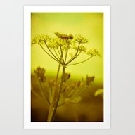 A Day In Summer Art Print