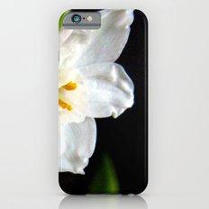 Paperwhites  iPhone 6 Slim Case