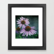 Beautiful summer with pink Echinacea / Daisy flowers Framed Art Print