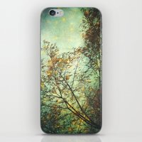 Magic In The Forest/ Gre… iPhone & iPod Skin