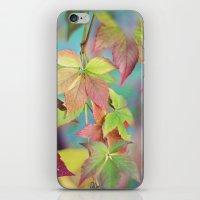 Colorful Fall iPhone & iPod Skin