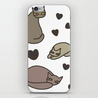 Cat1 iPhone & iPod Skin