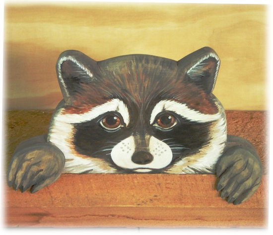 """Raccoon """"Here's Looking at YOU"""" Art Print"""