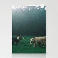 Cowz Stationery Cards