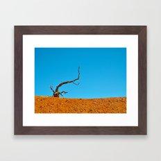 The Tree at Bryce Canyon National Park. Utah, USA Framed Art Print