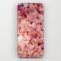 Pink Carpet iPhone & iPod Skin