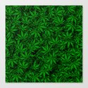 Weed. Canvas Print