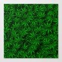 Weed. Canvas Print