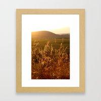 Gold Warm Light - JUSTAR… Framed Art Print