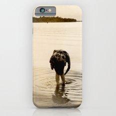 Dirty Fish Bait iPhone 6 Slim Case
