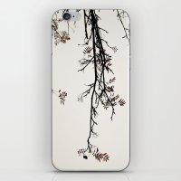 Delicate like snow iPhone & iPod Skin