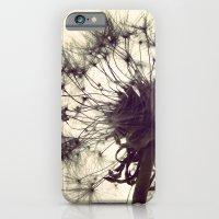 Dandelion Silhouette  iPhone 6 Slim Case
