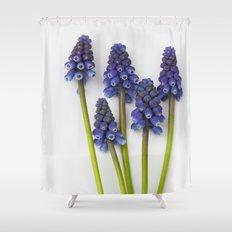Muscari - Blue Grape - JUSTART © Shower Curtain