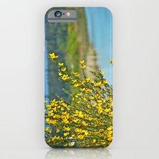 beautiful bc iPhone 6s Slim Case