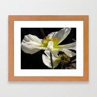 Floral Dream Framed Art Print
