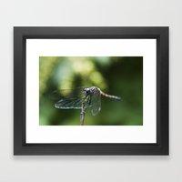 Fly, Dragon, Fly Framed Art Print