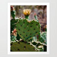 Sonoran Love Art Print