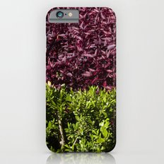 colorful leaves iPhone 6s Slim Case