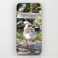 Goose iPhone & iPod Skin
