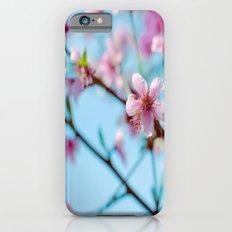 Pink on Blue iPhone 6 Slim Case
