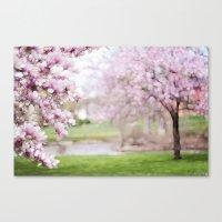 Dreamy Magnolia's Canvas Print