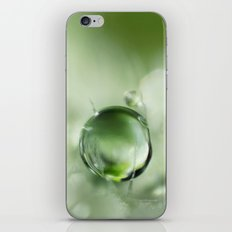 Poppy Leaf Green iPhone & iPod Skin