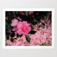 A sea of petals Art Print